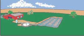 Lateral line septic system